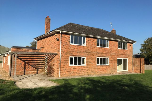 Thumbnail Detached house to rent in Salisbury Road, Abbotts Ann, Andover, Hampshire