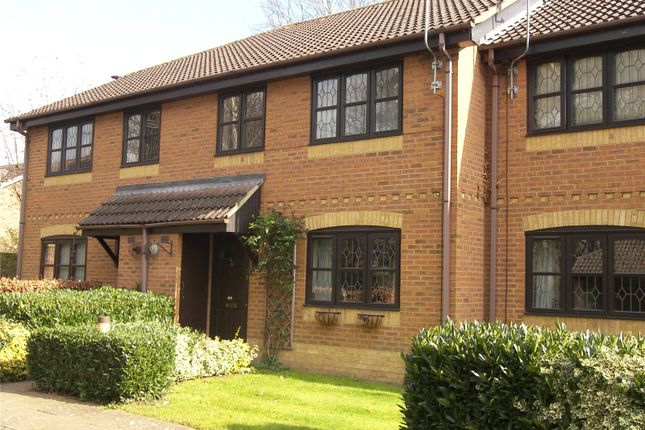 Thumbnail Terraced house to rent in Thornbury Green, Twyford, Berkshire