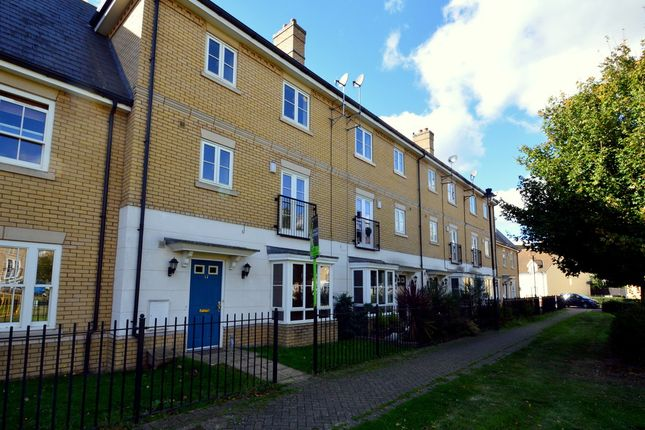 Thumbnail Town house to rent in Elderberry Road, Ipswich