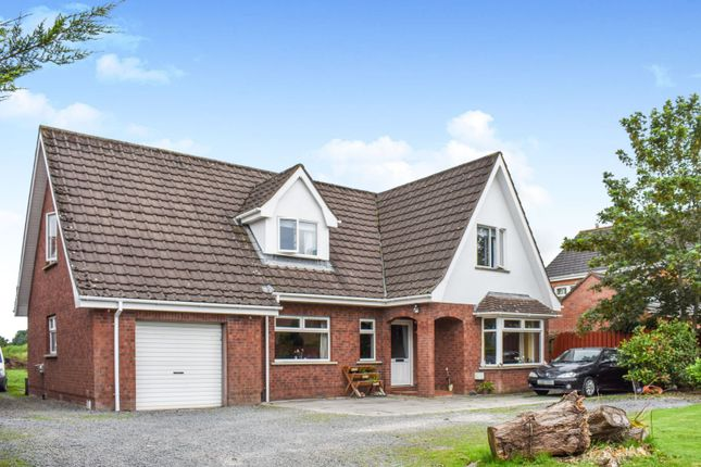 Thumbnail Detached house for sale in Kesh Road, Lisburn