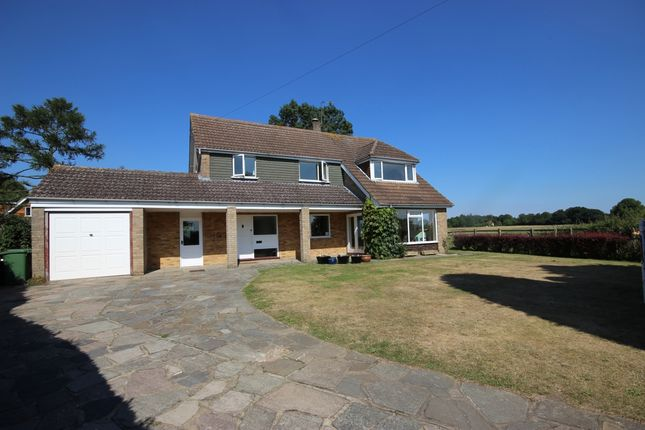 Thumbnail Detached house to rent in Croftwell, Harpenden