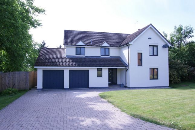 Thumbnail Detached house to rent in The Spinney, Cheltenham