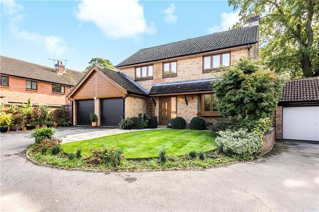 Thumbnail Detached house for sale in Tornay Grove, North Baddesley, Southampton, Hampshire
