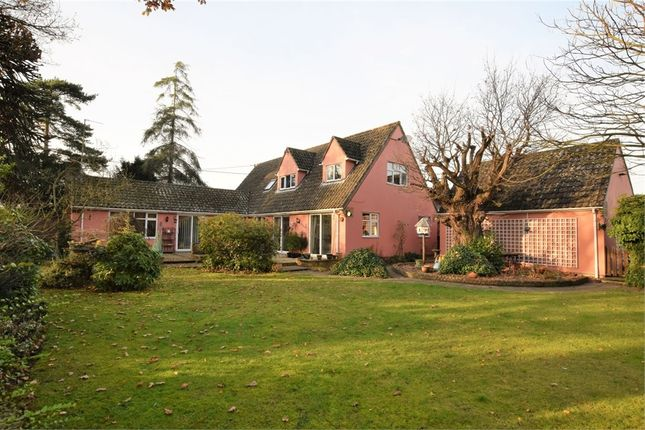 Thumbnail Property for sale in The Causeway, Great Horkesley, Colchester, Essex