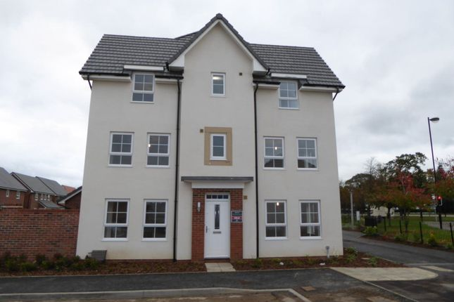 Thumbnail Semi-detached house to rent in 25 Rovers Way, Belle Vue, Bawtry Road