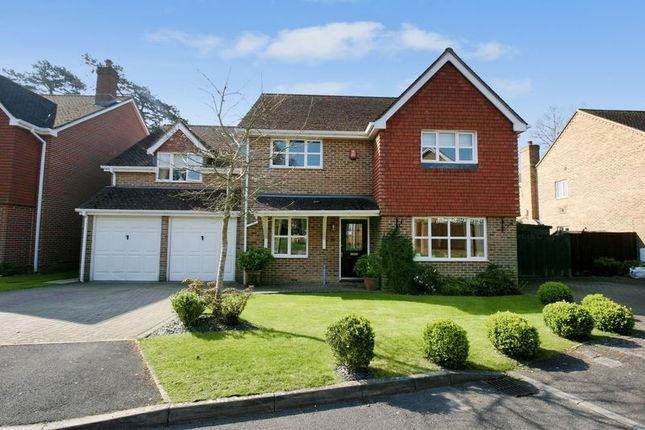 Thumbnail Property for sale in Grovebury, Locks Heath, Hampshire