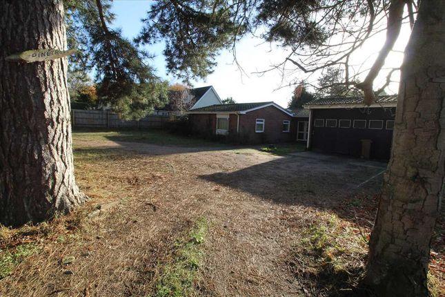 Thumbnail Bungalow to rent in Pinetrees, Purdis Farm Lane, Ipswich