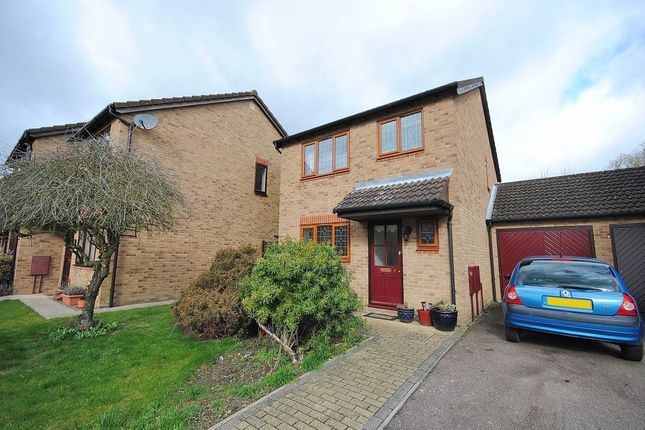 Thumbnail Detached house to rent in Blenheim Court, Bishops Stortford, Herts