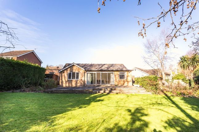 Thumbnail Detached bungalow for sale in The Retreat, Englefield Green, Egham