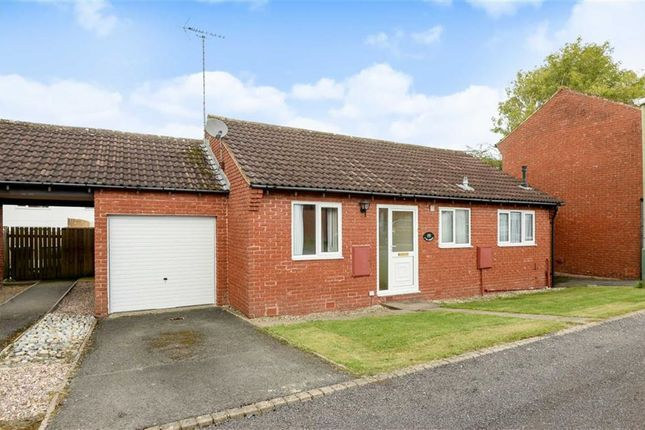 Thumbnail Detached bungalow to rent in The Hedges, Wanborough, Wiltshire