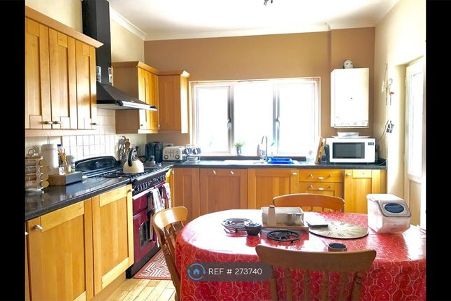 Thumbnail Terraced house to rent in Glanrafon Terrace, Aberystwyth