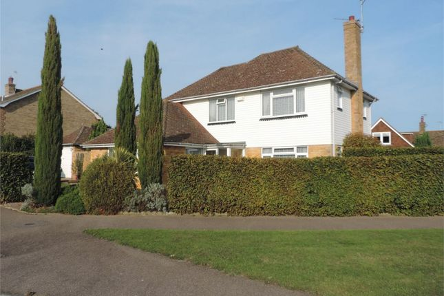 Thumbnail Detached house for sale in Frant Avenue, Bexhill On Sea, East Sussex