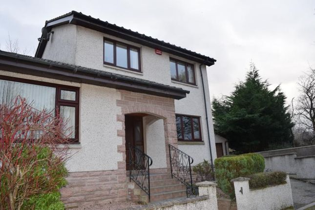 Thumbnail Semi-detached house to rent in Don Court, Woodside