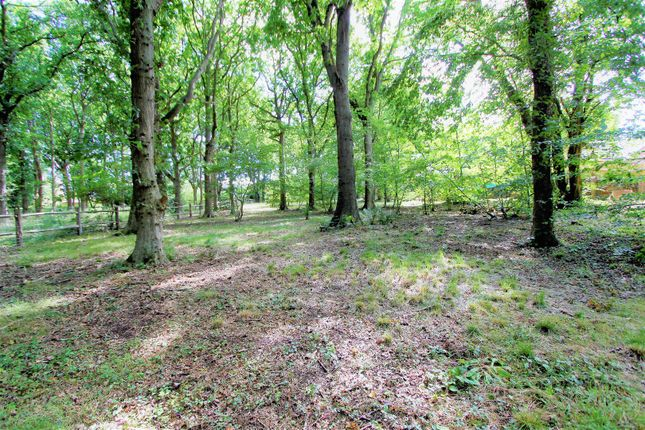 Thumbnail Land for sale in Top Cross Road, Bexhill-On-Sea
