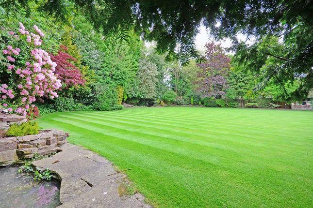 Garden of Rivendell, Derriman Glen, Ecclesall, Sheffield S11