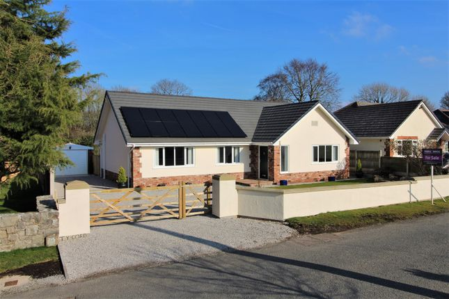 Thumbnail Detached bungalow for sale in Pen Y Fron Road, Pantymywn