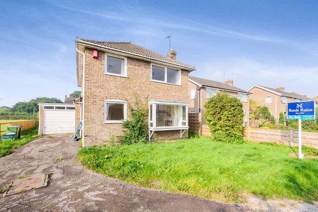 Thumbnail Detached house for sale in The Rowans, Skelton, York