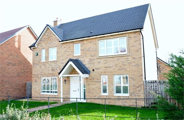 Thumbnail Detached house for sale in Eden Walk, St Mary Park, Morpeth, Northumberland.