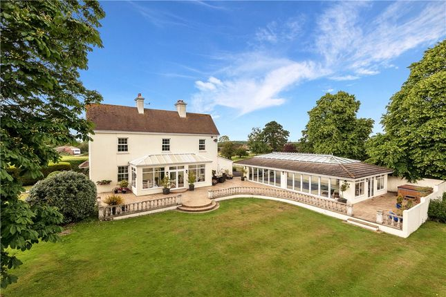 Thumbnail Equestrian property for sale in Mill Street, Corfe Mullen, Wimborne, Dorset