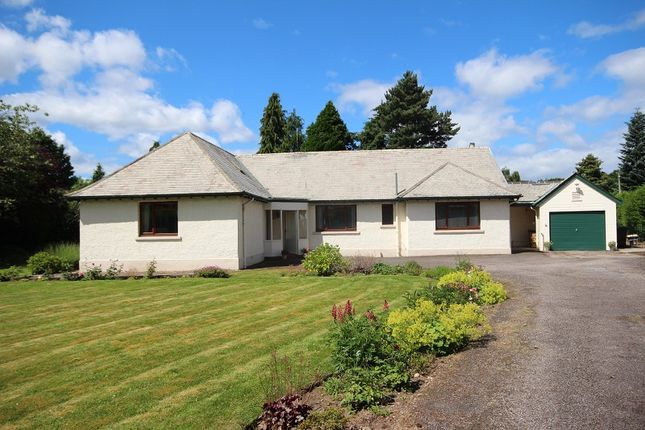 Thumbnail Detached bungalow for sale in Greengables, 10 Drummond Road, Drummond, Inverness.