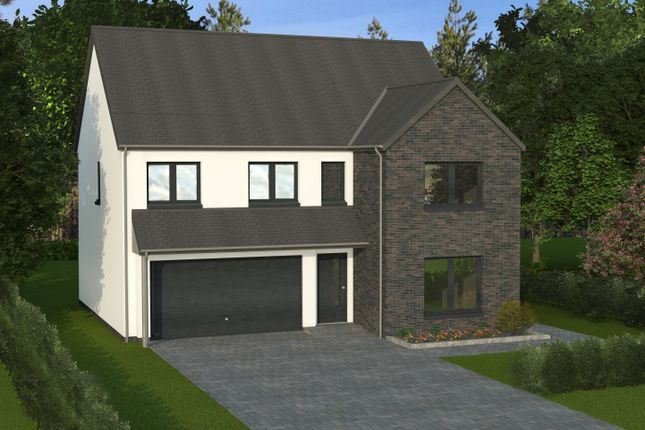 Thumbnail Detached house for sale in 6, The Woods, Hillside, Montrose