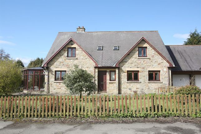 Thumbnail Detached house for sale in Station Road, Stannington, Morpeth