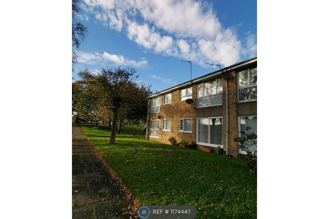 1 bed flat to rent in Winshields, Cramlington NE23