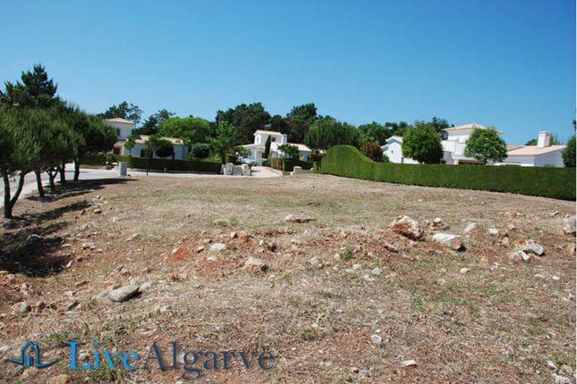 Building Plots In Alma Verde Eco Resort