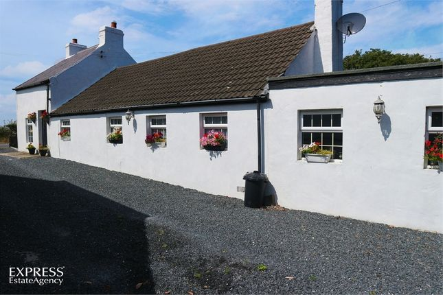 Thumbnail Cottage for sale in Main Road, Portavogie, Newtownards, County Down