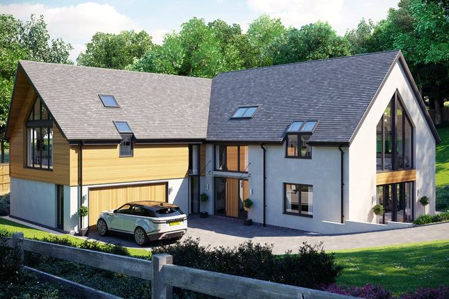 Thumbnail Detached house for sale in Park Lane, Exeter, Devon