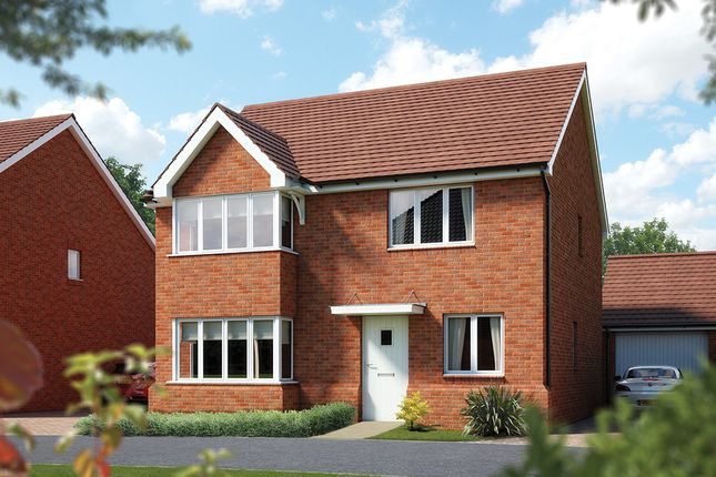 """Thumbnail Detached house for sale in """"The Canterbury"""" at Danworth Lane, Hurstpierpoint, Hassocks"""