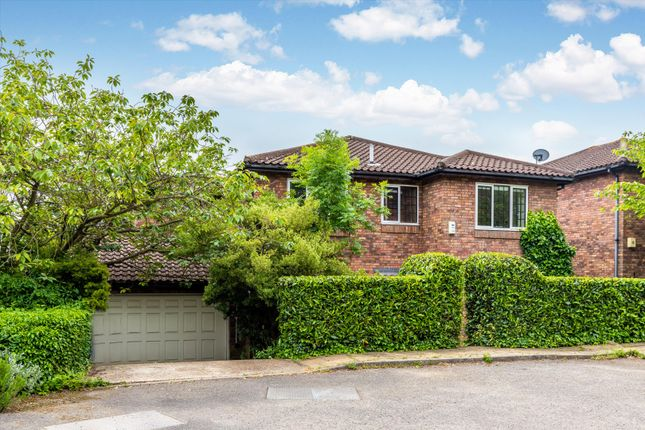 Thumbnail Detached house to rent in Arthur Road, London