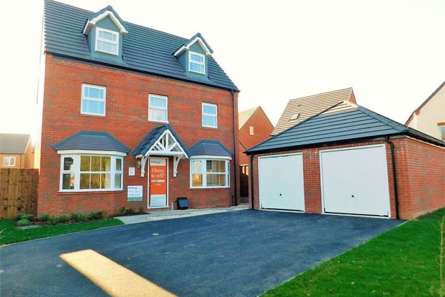 Thumbnail Detached house for sale in Whimbrel Park, Mallard Walk, Stafford