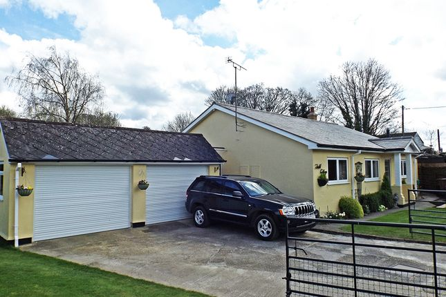 Thumbnail Bungalow for sale in Barwick, Ware