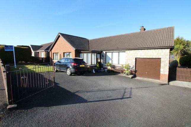 Thumbnail Bungalow for sale in Brooklands Crescent, Whitehead