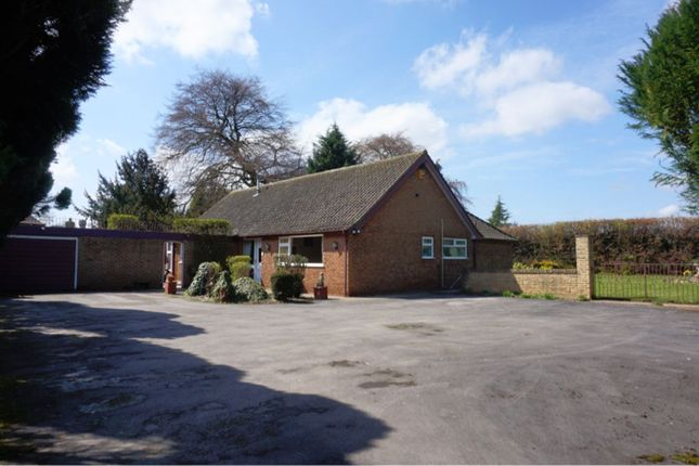 Thumbnail Detached bungalow for sale in Watnall Road, Nuthall, Nottingham