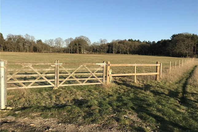 Thumbnail Land for sale in Uddens Drive, Wimborne