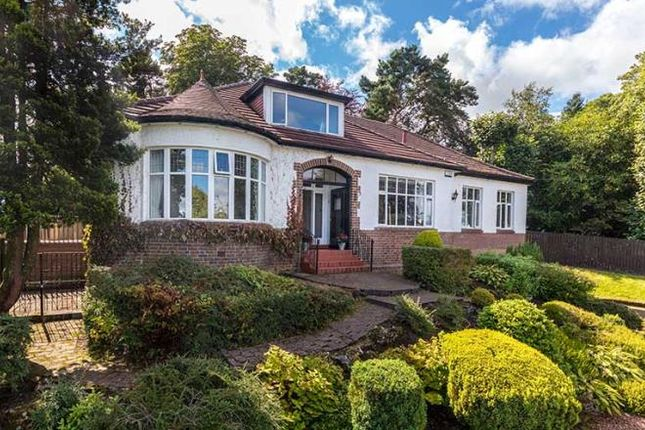 Thumbnail Property to rent in The Loaning, Giffnock, Glasgow