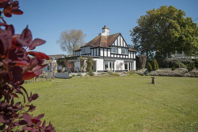 Thumbnail Detached house for sale in Greenway Road, Galmpton, Brixham, Devon