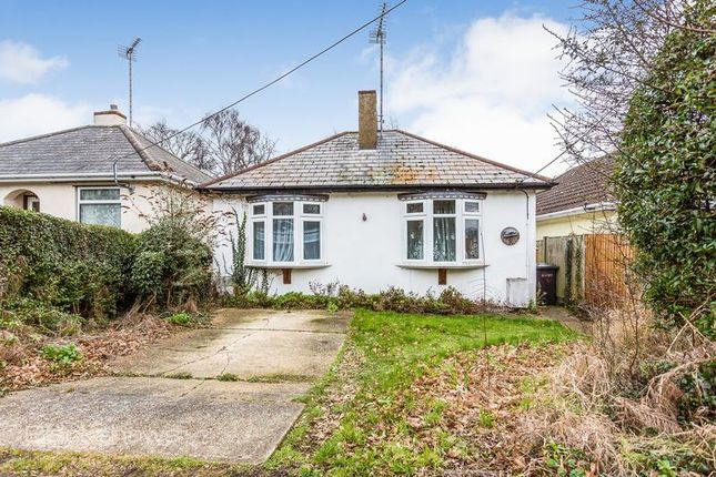 Thumbnail Detached bungalow for sale in Sunny Road, Hockley