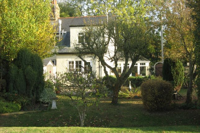 Thumbnail Semi-detached house for sale in Bartholomew Green, Essex