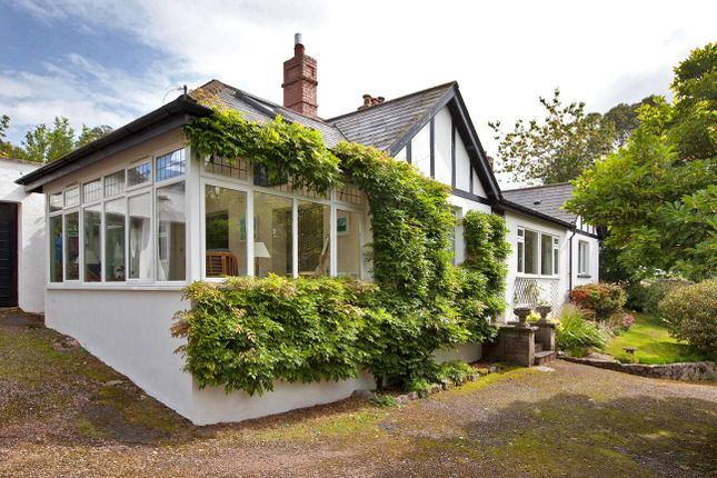 Thumbnail Detached bungalow for sale in Clapham, Exeter
