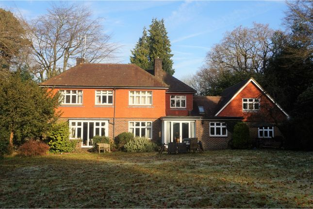 Thumbnail Detached house for sale in Danley Lane, Lynchmere