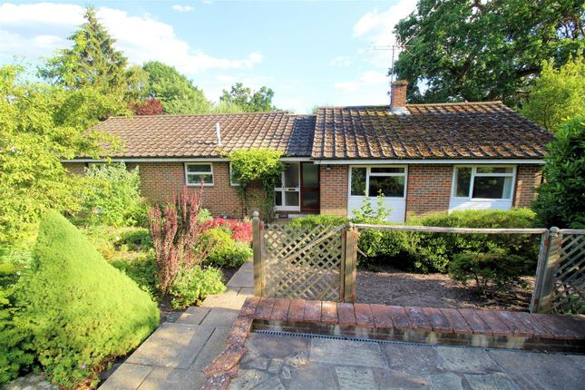 Detached bungalow for sale in Hook Hill Lane, Hook Heath, Woking