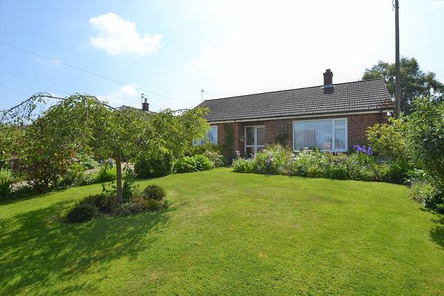 Thumbnail Bungalow for sale in Litcham Road, Mileham, Kings Lynn, Norfolk.