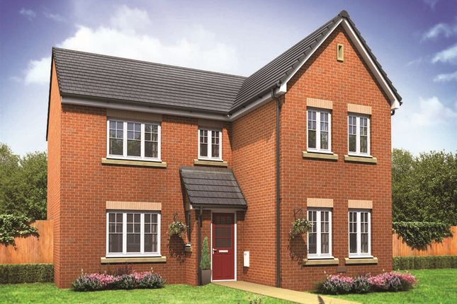 "Thumbnail Detached house for sale in ""The Carnaby"" at Ostrich Street, Stanway, Colchester"