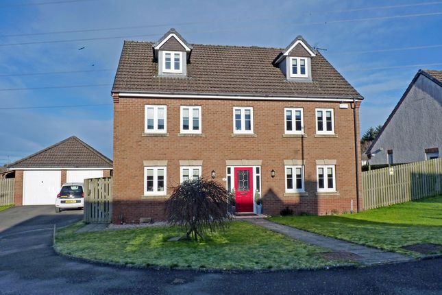 Thumbnail Detached house for sale in Torrance Gait, Crutherland Gate, East Kilbride