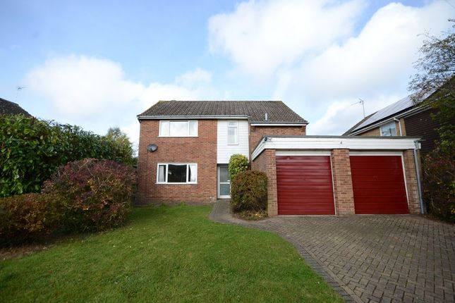 Thumbnail Detached house to rent in Camberry Close, Basingstoke
