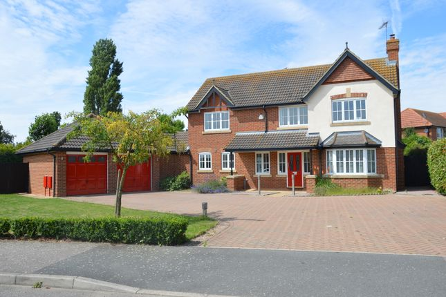 Thumbnail Detached house to rent in Court Tree Drive, Sheerness