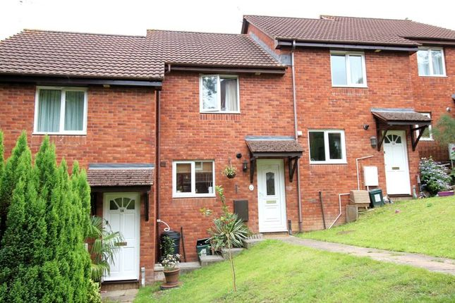 Thumbnail Property for sale in Lily Mount, Exeter